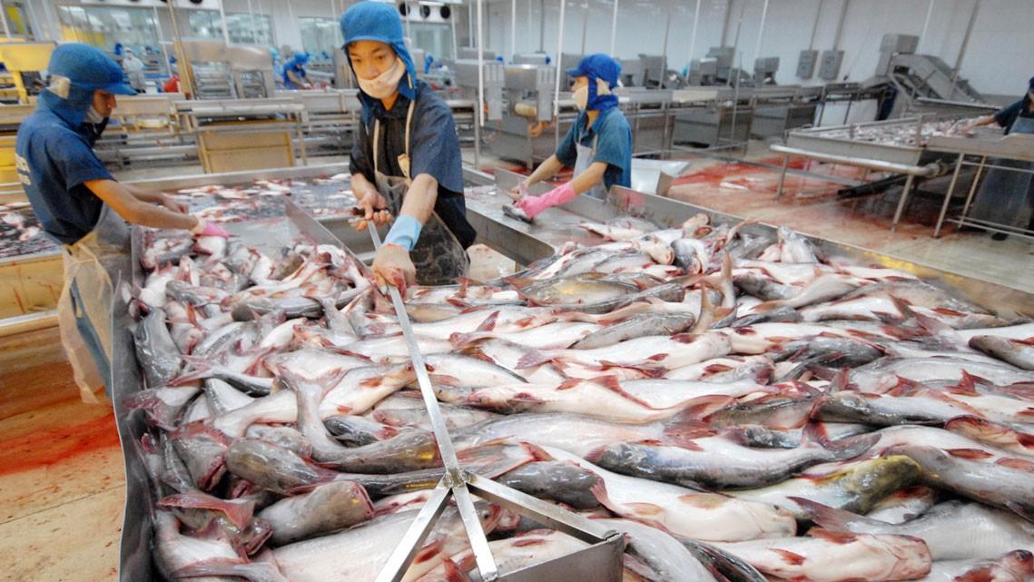 Nguồn cung hạn chế giá thủy sản toàn cầu tăng 25% - Ảnh 1.