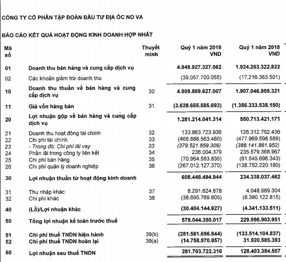 Lợi nhuận sau thuế quý I Novaland chỉ đạt 8,5% kế hoạch năm; phát triển mới 3 dự án ở khu Đông Sài Gòn trong 2019 - Ảnh 1.