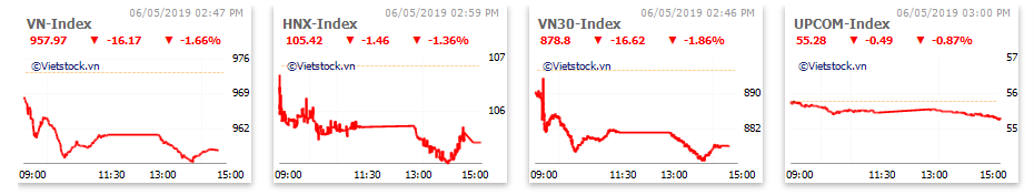 Thị trường chứng khoán 6/5: Thủy sản, dệt may bứt phá trở lại, VN-Index vẫn mất hơn 16 điểm - Ảnh 1.