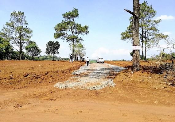 Giá đất 'đu' theo thông tin hạ tầng - Bài 1: Công trình trên giấy, giá đất tăng vọt - Ảnh 1.