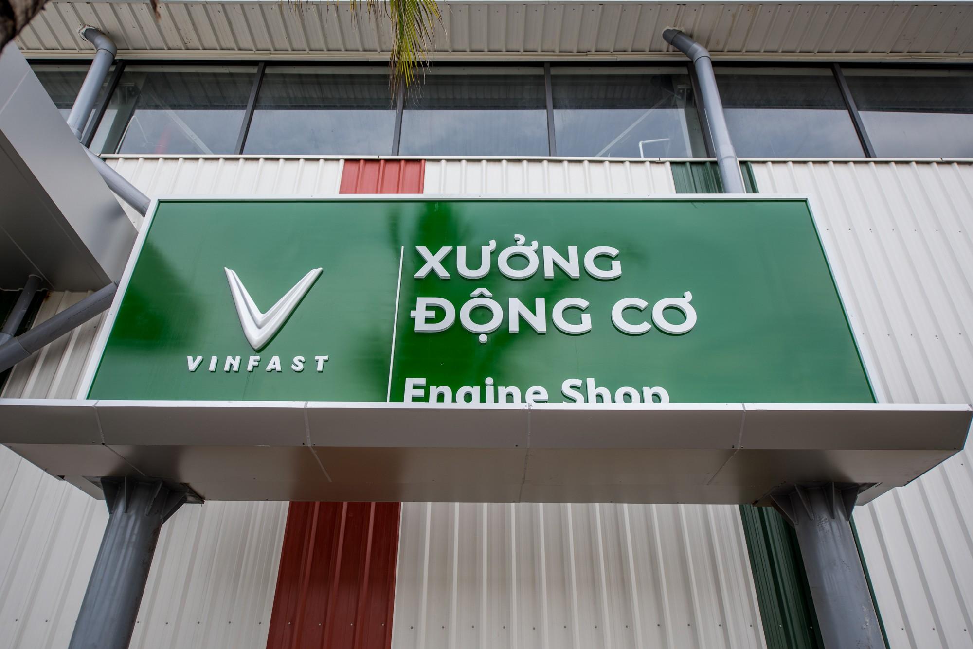 Xuong dong co