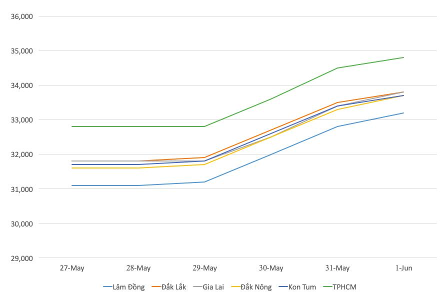 Giá cà phê hưng phấn ngay đầu tháng trước nguồn cung giảm - Ảnh 1.