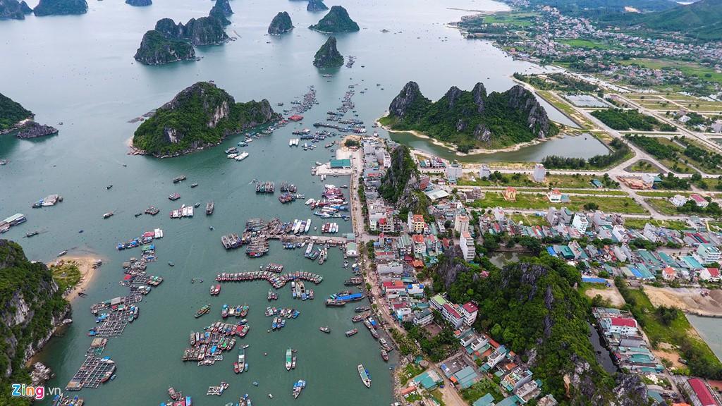 Liên danh Eurowindow và thủy sản Thống Nhất được duyệt lên ý tưởng mở rộng một siêu đô thị ở Vân Đồn - Ảnh 1.  Liên danh Eurowindow và thủy sản Thống Nhất được duyệt lên ý tưởng mở rộng một 'siêu' đô thị ở Vân Đồn cai rong 15596216364381166795599