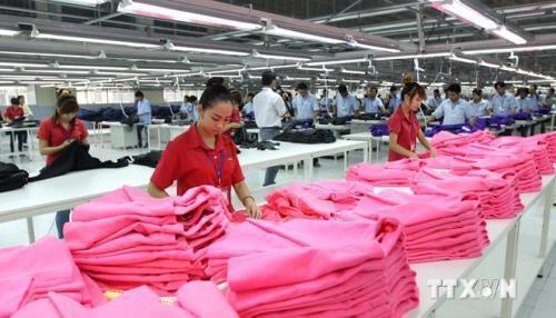 Xuất khẩu dệt may sang Nhật: Tạo thương hiệu bằng chất lượng - Ảnh 1.