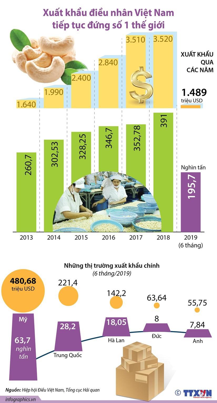 Xuất khẩu điều nhân Việt Nam tiếp tục đứng số 1 thế giới - Ảnh 1.