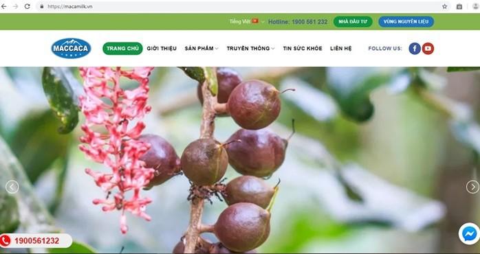 Công ty CP Macca Nutrition Việt Nam: Gây chú ý từ lợi nhuận khổng lồ - Ảnh 3.