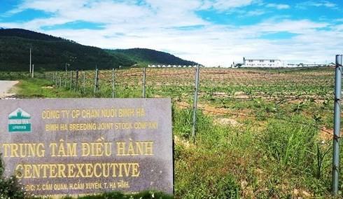 Thông tin mới dự án nuôi bò 4.500 tỉ phá sản liên quan ông Trần Bắc Hà - Ảnh 2.