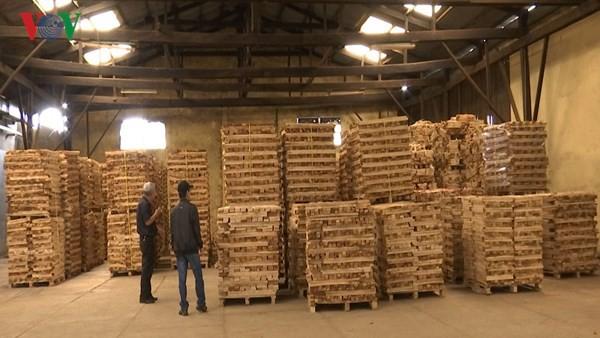 Xuất khẩu gỗ đứng thứ 6 trong những mặt hàng xuất khẩu tỉ USD - Ảnh 1.
