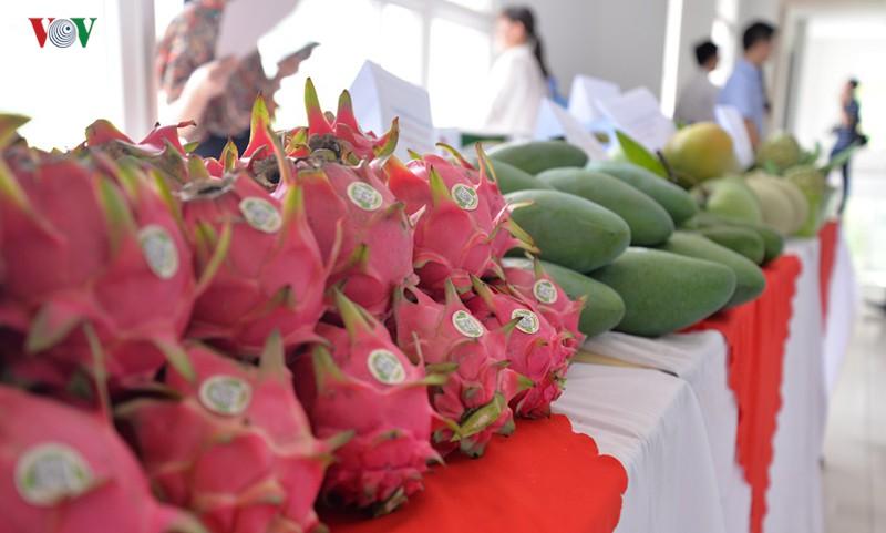 Trái cây đặc sản Sơn La có mặt ở Anh, Mỹ, Bỉ mang về trăm triệu USD - Ảnh 1.