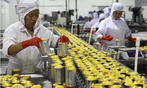 Công ty Trung Quốc chật vật sinh tồn dưới đòn thuế của Mỹ - Ảnh 1.