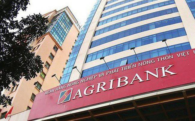 Agribank lãi trước thuế 8.200 tỉ đồng trong 7 tháng đầu năm - Ảnh 1.