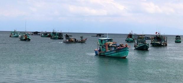 Kiểm soát chặt tàu ra vào tại các cảng cá nhằm gỡ 'thẻ vàng' - Ảnh 1.