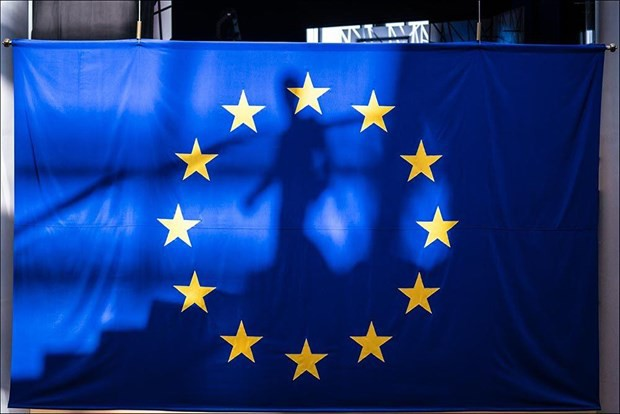 Tăng trưởng kinh tế châu Âu chững lại trong quý 2 năm 2019 - Ảnh 1.