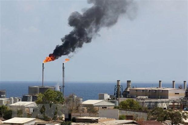OPEC dự báo về thị trường dầu mỏ từ nay đến cuối năm 2019 - Ảnh 1.