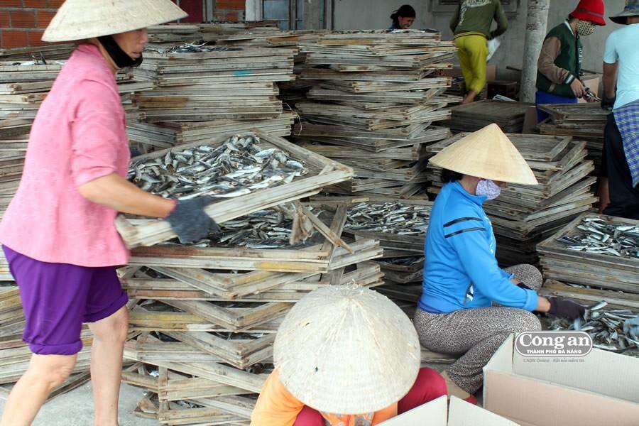 Tồn kho hàng ngàn tấn cá - Ảnh 2.