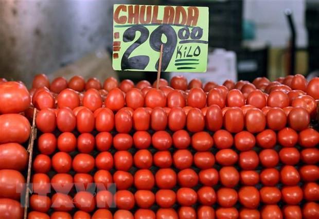 Mỹ và Mexico đạt thỏa thuận chấm dứt tranh cãi về áp thuế cà chua - Ảnh 1.