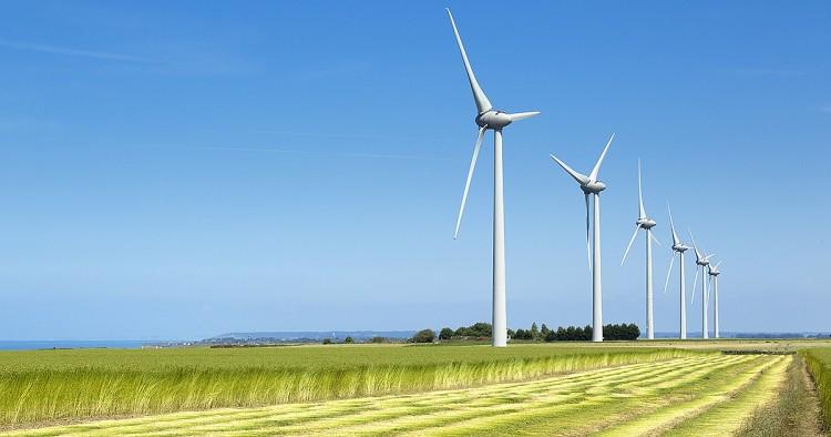 Total tăng cường sức mạnh trong lĩnh vực năng lượng tái tạo - Ảnh 1.