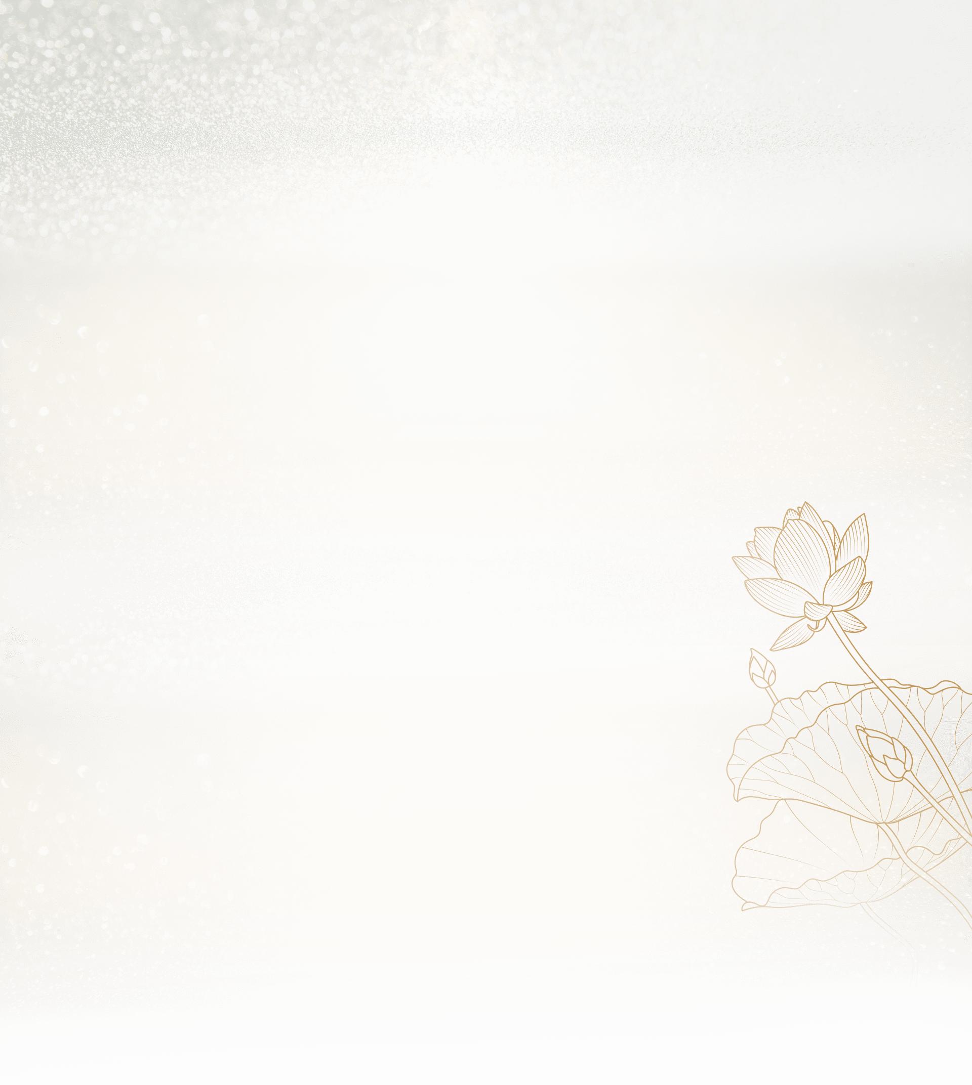 20 năm theo đuổi giấc mơ làm đũa sứ của Minh Long - Ảnh 6.