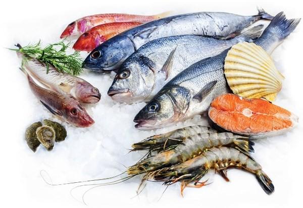 seafood-haisan