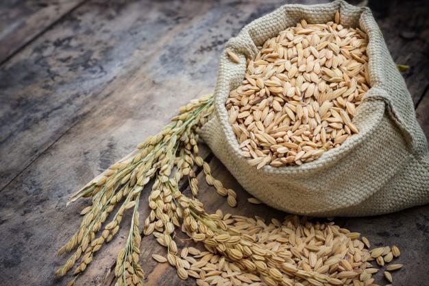 arroz-cru-em-um-saco-e-arroz-de-espiga_47021-14
