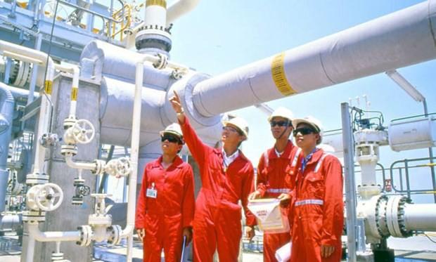Việt Nam sẽ nhập 15 triệu tấn khí thiên nhiên hóa lỏng vào năm 2035 - Ảnh 1.