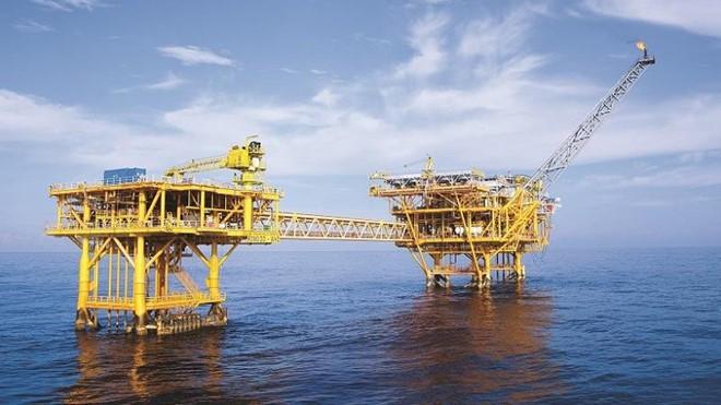 Lãnh đạo PVN than khó triển khai dự án Cá Voi Xanh - Ảnh 2.