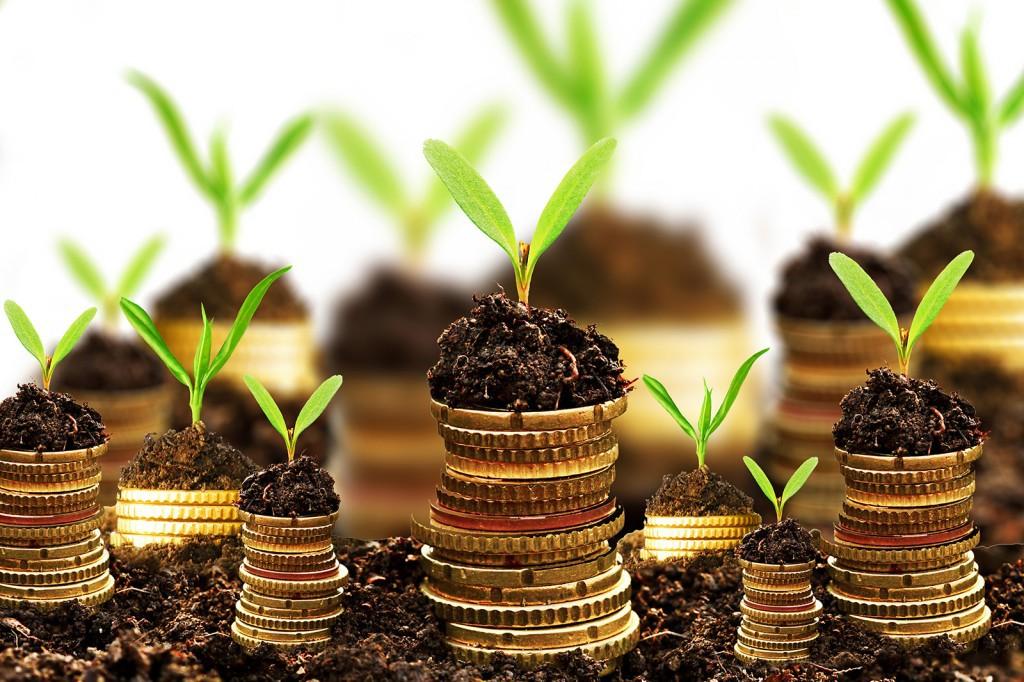 Vốn đầu tư là gì? Các tiêu chí phân loại vốn đầu tư