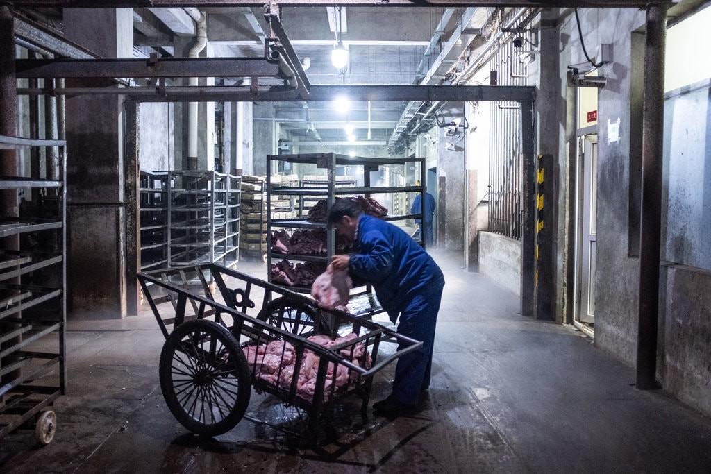 'Quá đắt, quá đắt, quá là đắt!' - Trung Quốc giữa khủng hoảng thịt lợn - Ảnh 2.