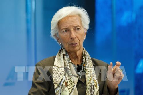 Hôm nay chính thức phê chuẩn chức Chủ tịch ECB - Ảnh 1.