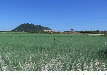 avatar_1567408304609-crop