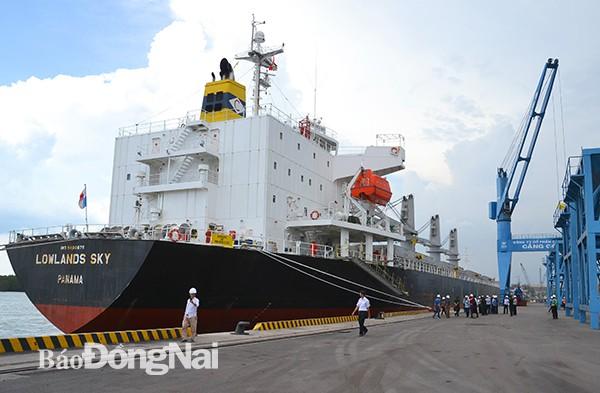 Tâm điểm phát triển logistics - Ảnh 1.