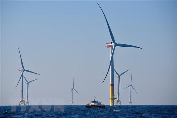 Gần một nửa sản lượng điện ở Đức đến từ các nguồn năng lượng tái tạo - Ảnh 1.