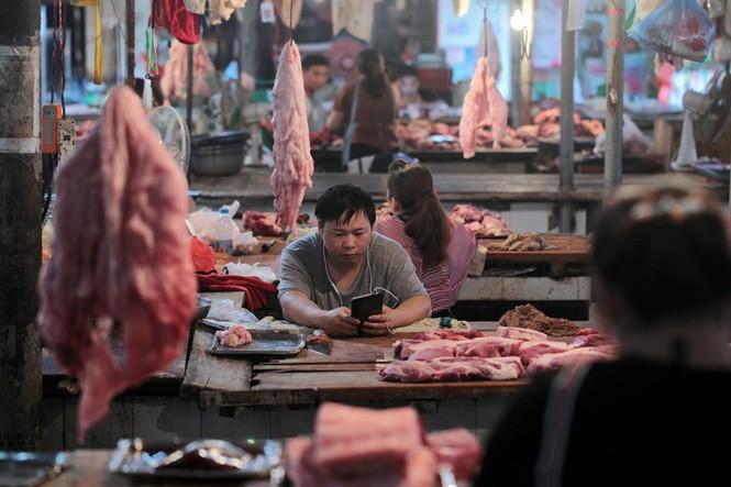 Câu hỏi khó của nông dân nuôi heo Trung Quốc - Ảnh 2.