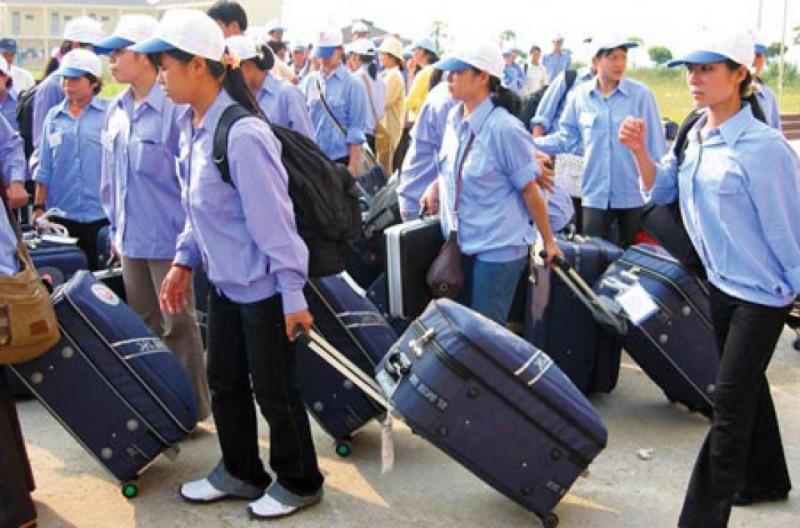 5 công ty xuất khẩu lao động bị phạt 180 triệu đồng - Ảnh 1.