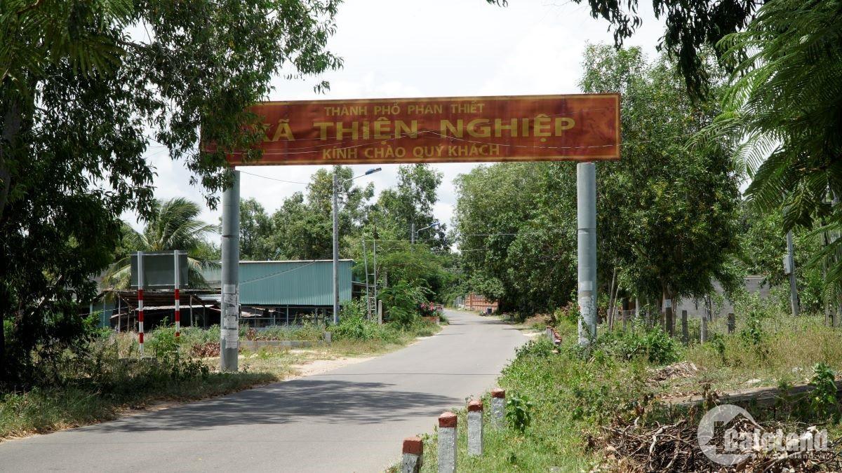 Đất sân bay Phan Thiết: Cò đất ôm tiền tỉ, người dân ngậm ngùi - Ảnh 1.