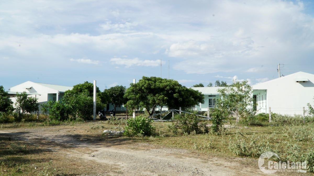 Đất sân bay Phan Thiết: Cò đất ôm tiền tỉ, người dân ngậm ngùi - Ảnh 4.