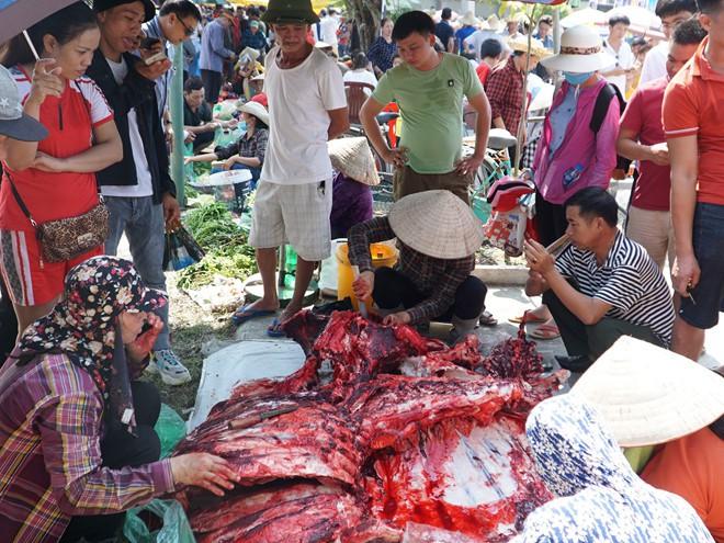 Hơn hai triệu đồng một kg thịt trâu chọi Đồ Sơn - Ảnh 6.