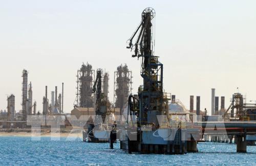 OPEC+ khó có thể cắt giảm sản lượng sâu hơn nữa - Ảnh 1.