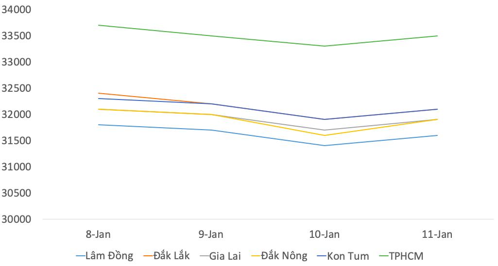 Giá cà phê tuần qua 12/1: Giảm mạnh tới 600 đồng/kg tại các kho quanh quanh TP HCM trong tuần qua - Ảnh 1.