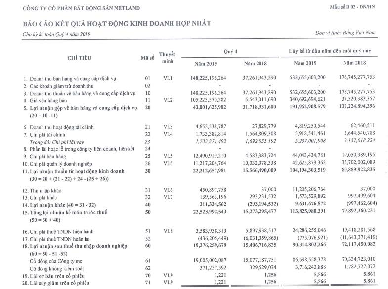 Cổ phiếu mất hơn nửa giá trị, Bất động sản Netland ghi nhận lợi nhuận tăng 25% năm 2019 - Ảnh 1.