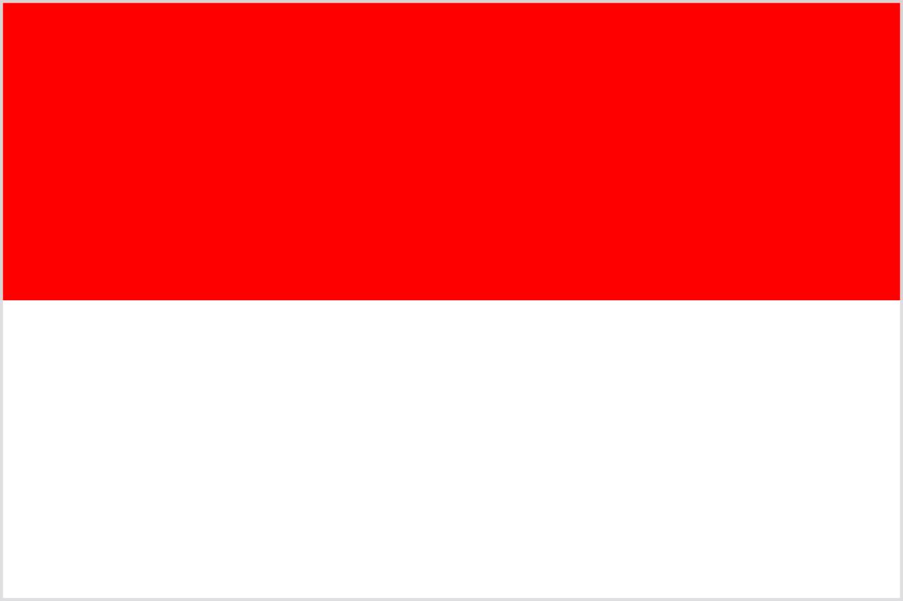 Thương vụ Việt Nam tại Indonesia - Ảnh 1.