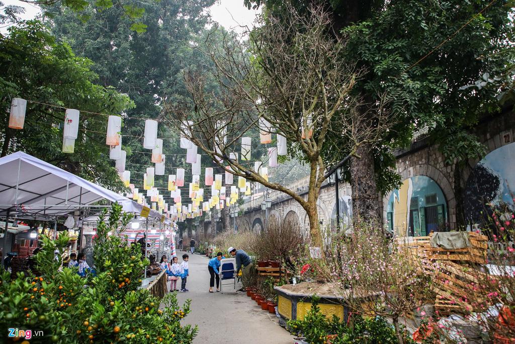 Cây mai trăm tuổi giá đắt ngang căn chung cư cao cấp ở Hà Nội - Ảnh 2.