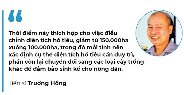 Vị cay hồ tiêu Việt - Ảnh 2.
