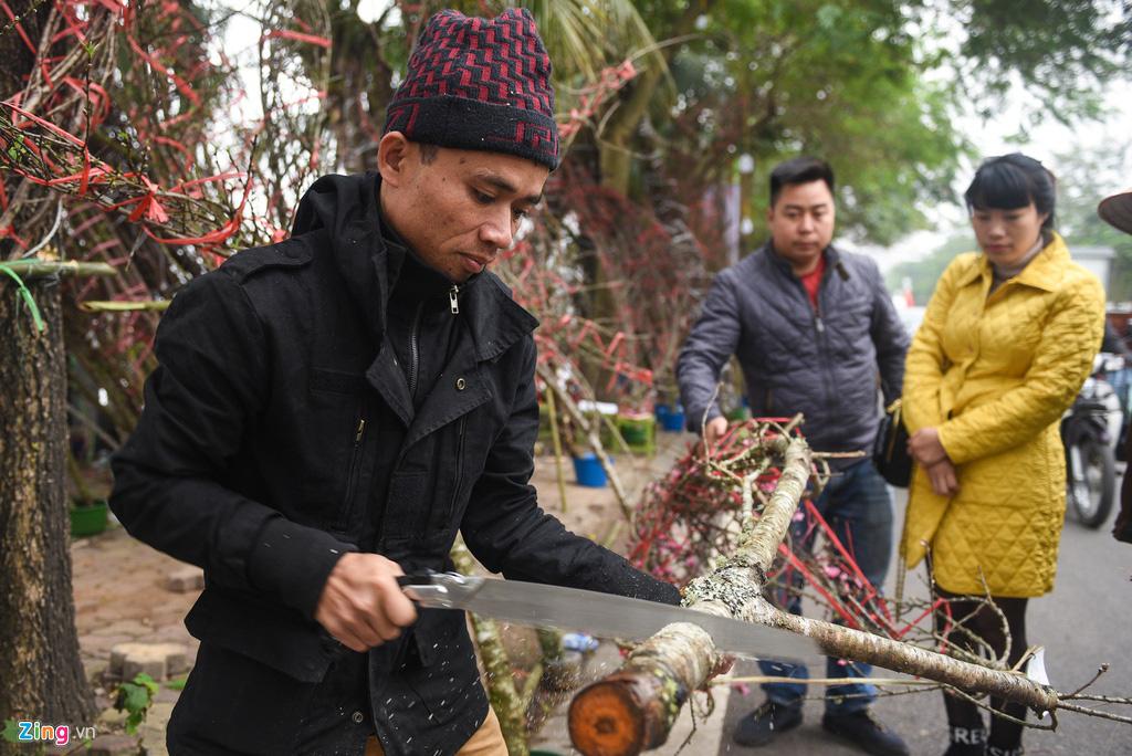 Lan hồ điệp 346 cây, giá 106 triệu cho Tết Canh Tý - Ảnh 4.