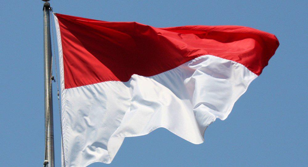Hiệp định tránh đánh thuế hai lần giữa Việt Nam và Indonesia - Ảnh 1.