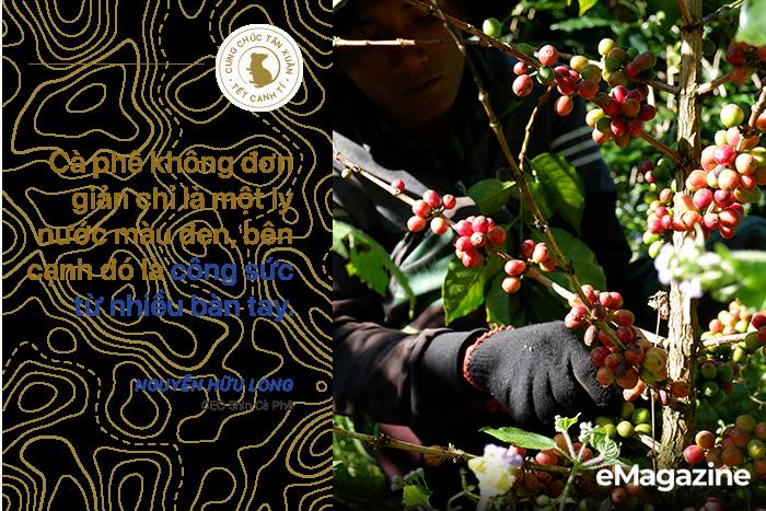 [Emagazine] Nguyễn Hữu Long, người đi khai phá những giống cà phê đặc biệt - Ảnh 15.