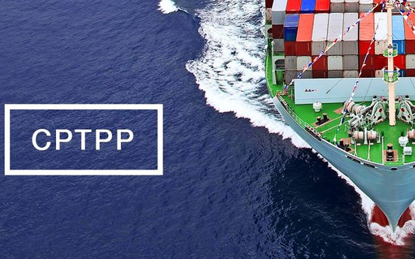 CPTPP, cơ hội lớn cho các ngành hàng xuất khẩu mũi nhọn - Ảnh 1.