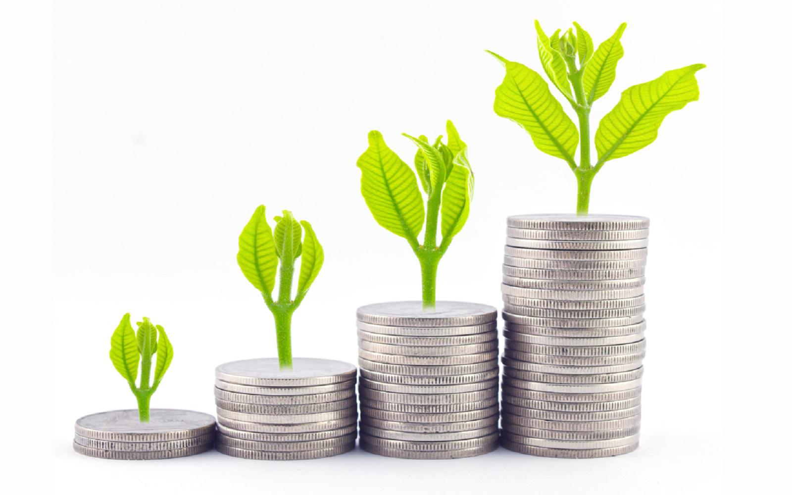 Unit investment trust investopedia registrar fx trading