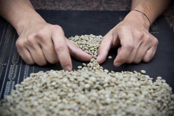 Xuất khẩu cà phê Brazil sang các nước Arab tăng 29% - Ảnh 1.
