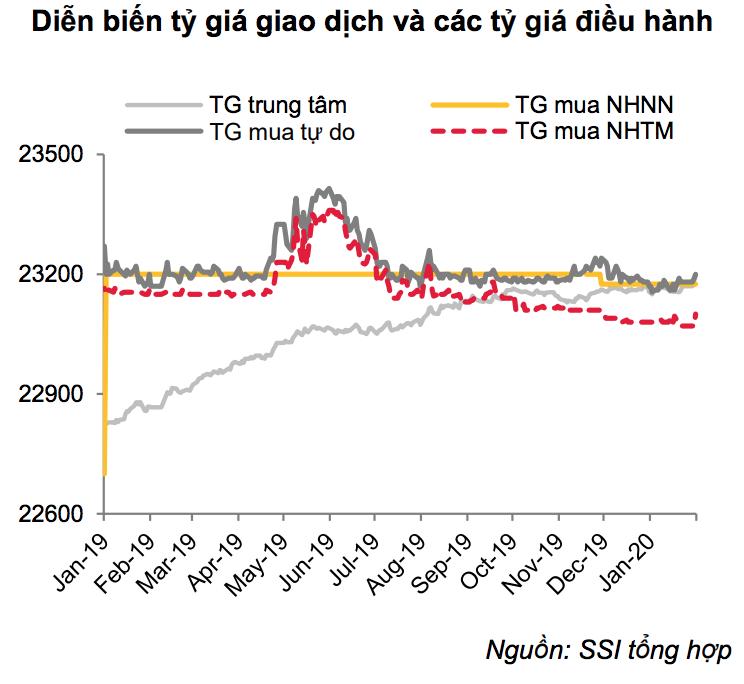 Tháng 1, tỷ giá đi ngang trong khi nguồn cung ngoại tệ hết sức dồi dào - Ảnh 1.